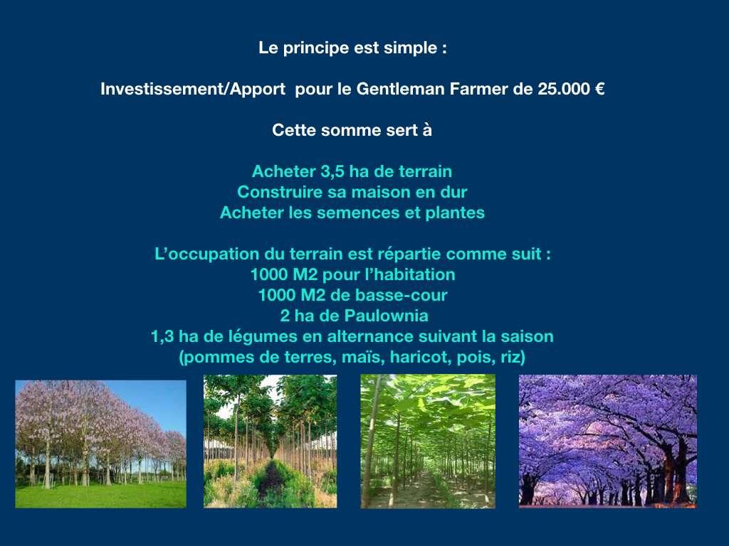 Investissez en agricole à Madagascar