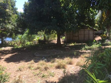 A vendre, terrain pieds dans l'eau, situé à Nosy Komba