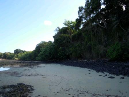 A vendre, terrain situé au bord de la plage d'Ampasindava