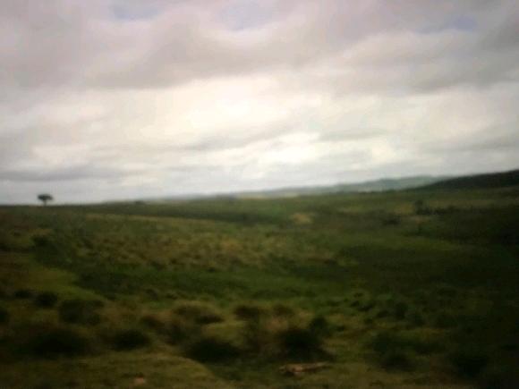 Terrain de 10.000 ha pour exploitation agricole sur Brickaville