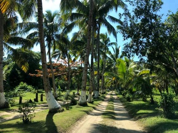 A vendre, authentique hôtel lodge restaurant dans la région Est de Madagascar