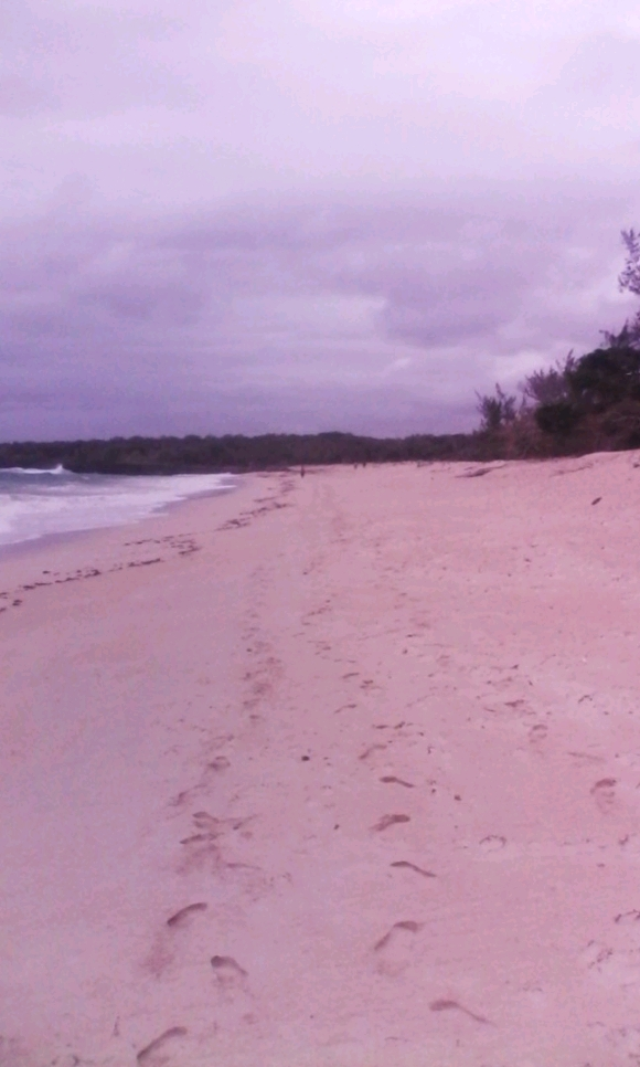 A vendre, terrain de 9Ha en bord de plage d'Ampasy Meva