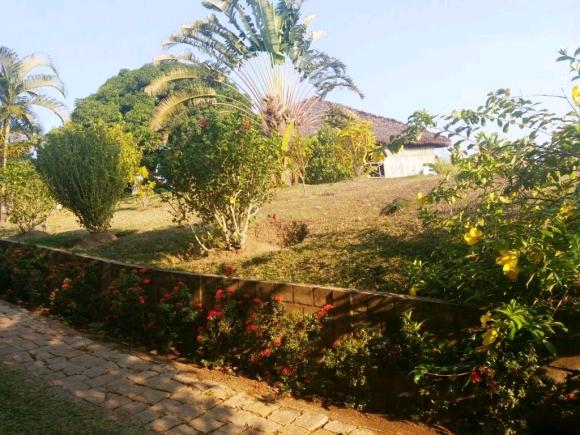 Charmant bungalow dans un endroit calme et verdoyant