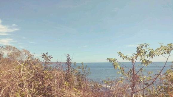 Terrain en bord de plage