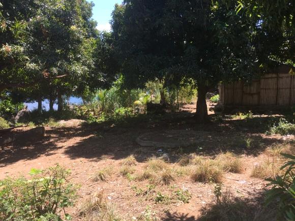 A vendre, terrain, pieds dans l'eau à Nosy Komba.