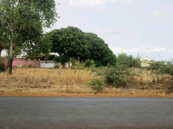 A vendre,beau terrain au bord de la route allant à l'aéroport