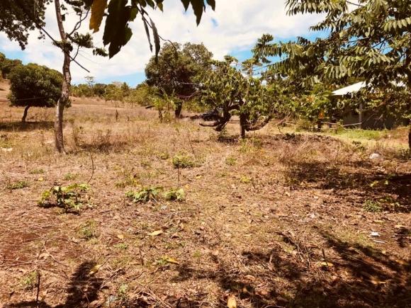 A vendre, terrain à petit budget situé à Andilana