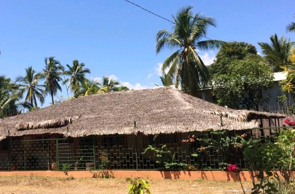 A louer, Belle villa dans une cocoteraie de plage