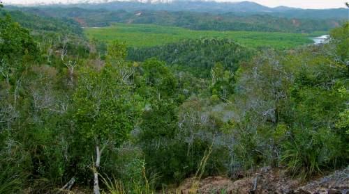 A vendre, beau terrain à Ambariomena