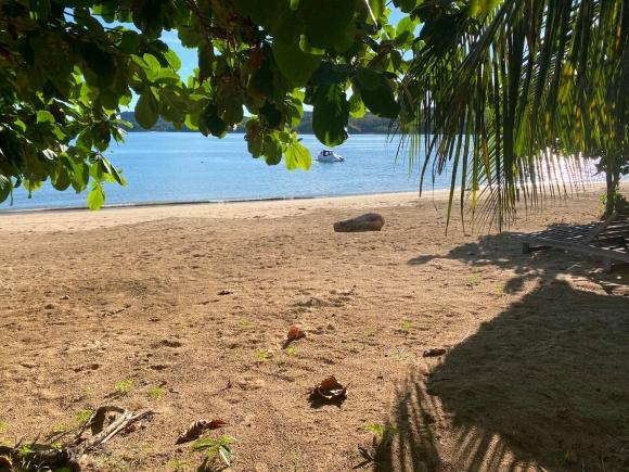 Beau terrain en bord de plage
