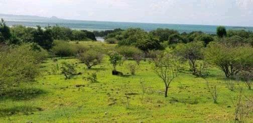 Grand terrain de 10 ha en bord de plage situé à Diego Suarez