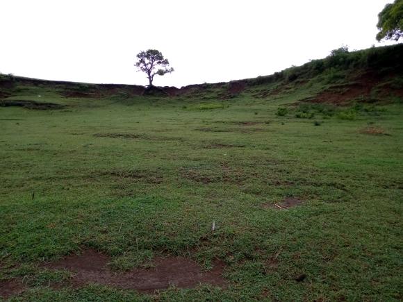 A vendre, terrain plat prêt à bâtir(3)