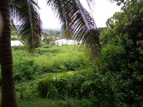 A vendre, terrain en pente avec vue sur la campagne environnante