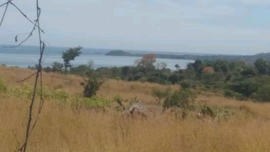 Grand terrain à vendre situé tout au Nord de Nosy Be avec vue sur mer