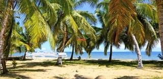 Terrain en bord de plage ideal pour investisseur